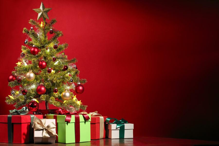 Weihnachtsbaumservice